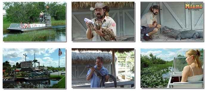 Photos von der Everglades Tour