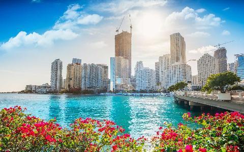 ⛴️ Biscayne Bay Cruise - Get A Free Drink