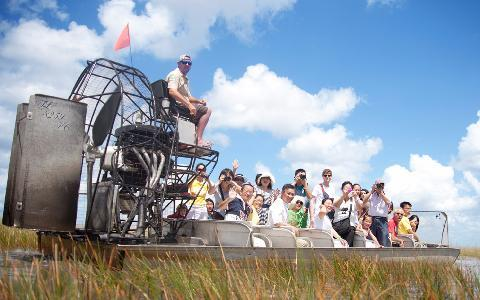 Excursion dans les Everglades Fort Lauderdale